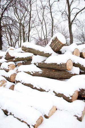 drank: pile on woods