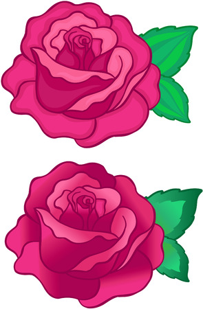 Roses Vector Illustration (with and without gradient) Vettoriali