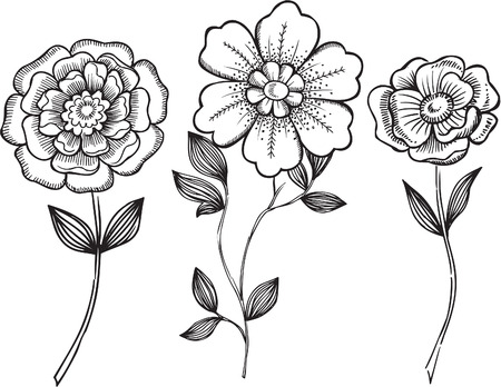 Ornamental Flowers VEctor Illustration Ilustrace