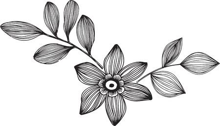 Ornamental Flower with Leaves Vector Illustration