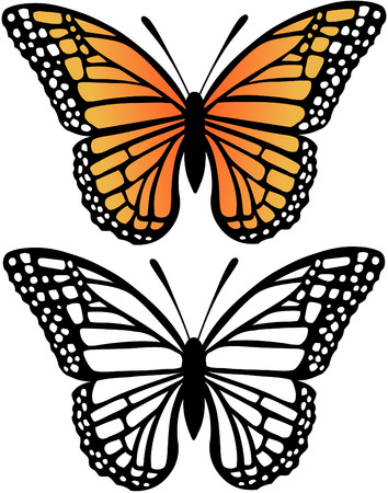 Monarch Butterfly and Silhouette Vector Illustration