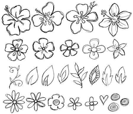 Sketcy Doodle Tropical Vector Elements Vettoriali