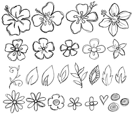 Sketcy Doodle Tropical Vector Elements Illustration