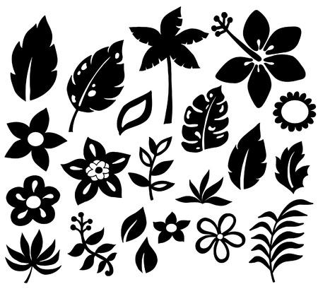 熱帯の花と葉のベクトル シルエット