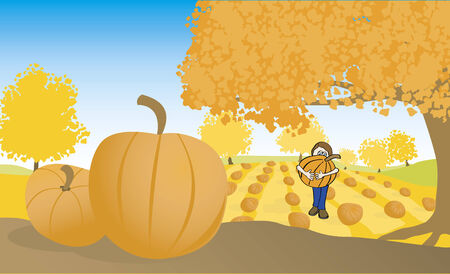 pumpkin patch: Illustration of a b carying a pumpkin from a pumpkin patch. Illustration