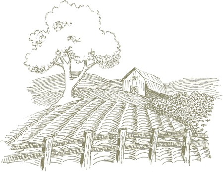 Pen and ink style illustration of a farm scene.