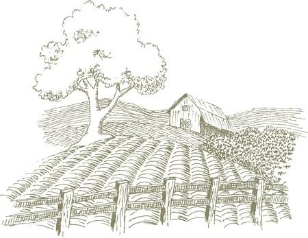 Pen en inkt stijl illustratie van een boerderij scène.