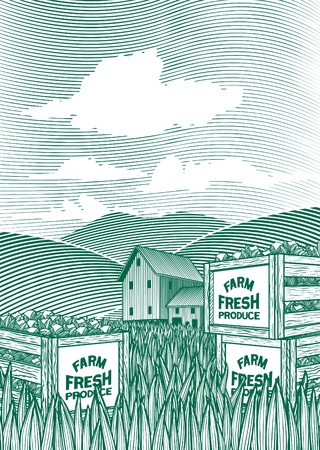 woodcut: Woodcut style illustration of vegetable crates sitting on the ground with a barn in the background.
