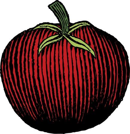 Holzschnitt Tomate Standard-Bild - 9909770