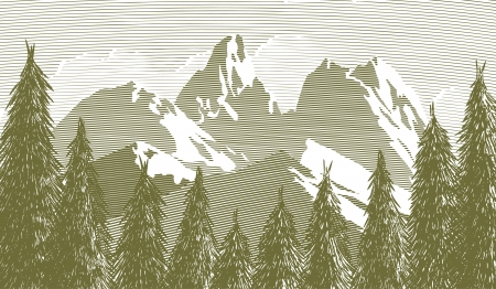 Woodcut style illustration of an opening in the trees with a mountain in the background. Illustration