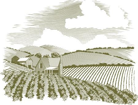 granero: Ejemplo del estilo del grabar en madera de una casa de campo rural con campos de cultivo que lo rodean. Vectores