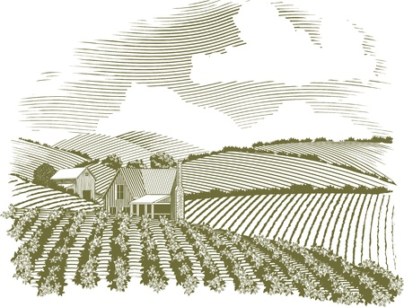 Woodcut style illustration of a rural farm house with fields of crops surrounding it. Vector