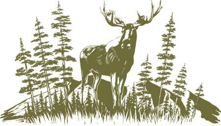 alces alces: Ilustraci�n de estilo de grabado de un alce con �rboles y monta�as en el fondo. Vectores