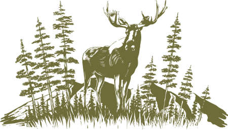 Woodcut-style illustration of a moose with trees and mountains in the background. Illustration