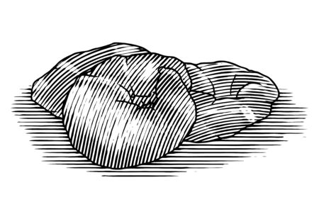 Woodcut illustration of a Croissant isolated on white.