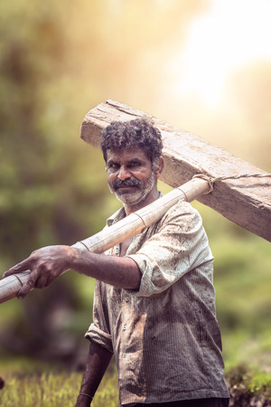 Happy Indian farmer standing with wooden plough in rice field