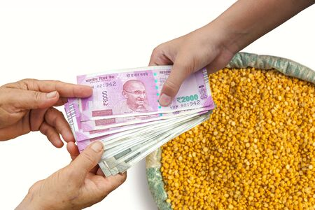 Hand Giving Indian 500 and 2000 Rupee Bank Notes over bag, Burlap full of chickpeas, Yellow Chana Split Peas, Dried Chickpea Lentils or Toor Dal.