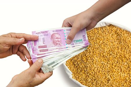 Hand Giving Indian 500 and 2000 Rupee Bank Notes over bag, Burlap full of chickpeas, Yellow Chana Split Peas, Dried Chickpea Lentils or Toor Dal