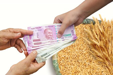 Farmer Selling Crops, Hand Giving Indian 500 and 2000 Rupee Bank Notes over bag, Burlap full of paddy rice.