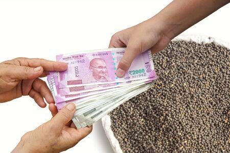 Hand Giving Indian 500 and 2000 Rupee Bank Notes over bag, Burlap full of Urad Dal Black Gram Vigna Mungo.