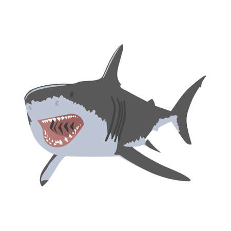 Shark open mouth vector illustration. Clipping Art good for cutting file