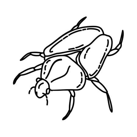 Goliath Beetles Icon. Tropical Animal Hand Drawn Icon Set Vector. Ilustração