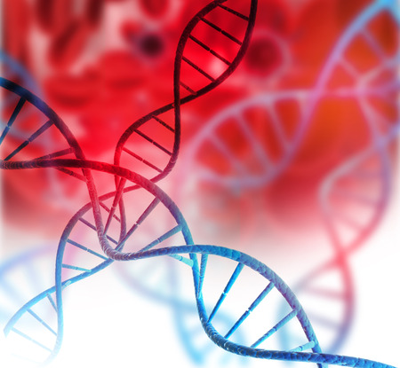 genomes: DNA structure