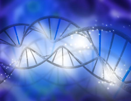 genomes: DNA structure;