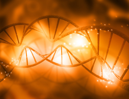 genomes: DNA structure   Stock Photo