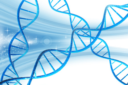 DNA structure   photo