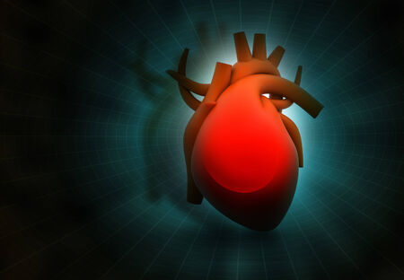 blood flow: Human heart on abstract dark background