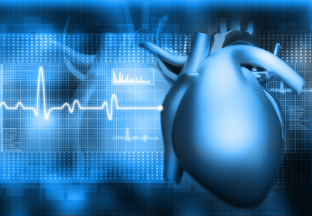 heart rate: Human heart on abstract dark background