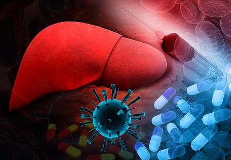 higado humano: La infección del hígado con el virus de la hepatitis y la terapia de la medicina Foto de archivo