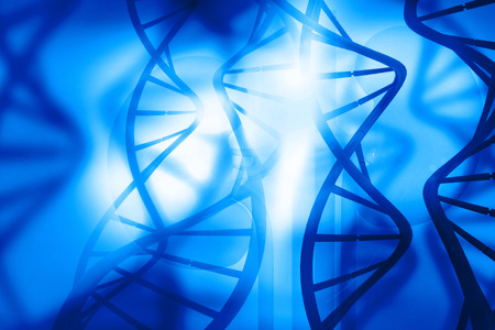 genomes: DNA molecules on blue background