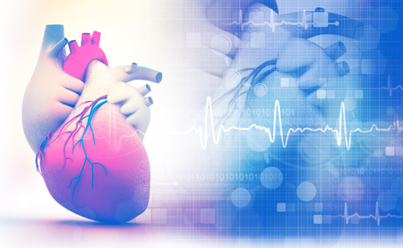 Human heart with ecg graph on white background Stock Photo