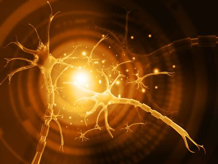 impulse: 3d illustration of human neuron
