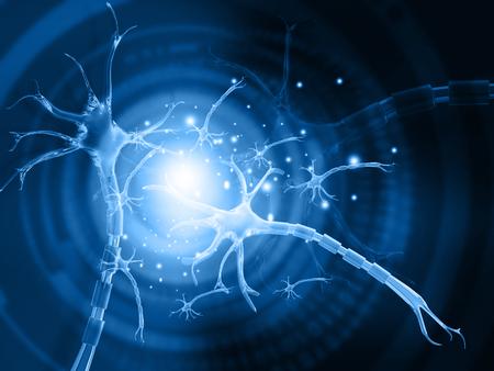 3d illustration of human neuron