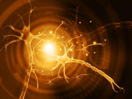 3d illustration of human neuron Stock Illustration - 78855206