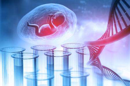Fetal with DNA on abstract background. 3d illustration Standard-Bild
