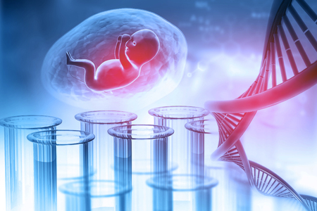 Fetal with DNA on abstract background. 3d illustration Stock Photo