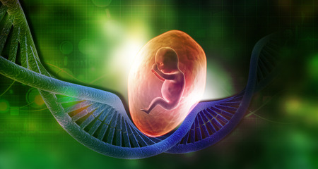 Dna with fetus . 3d illustration