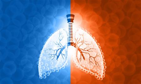 Bella imagen de la anatomía del pulmón humano. Ilustración 3d