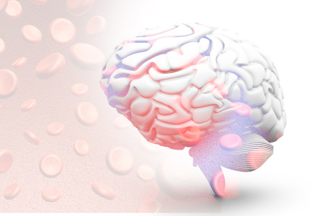 Human brain with blood cells. 3d render Reklamní fotografie