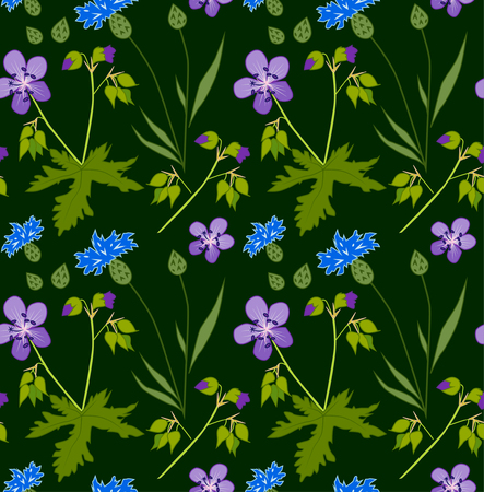 Vector floral pattern with geranium and cornflower