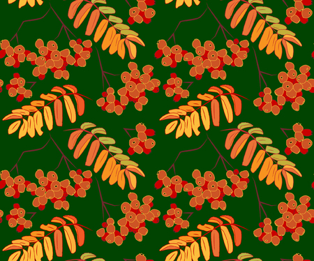 Floral pattern with rowan leaves. Illustration