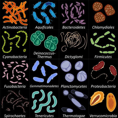 Set of different types of bacterias on black background, vector illustration
