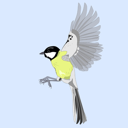 Flying great titmouse against the sky, vector illustration