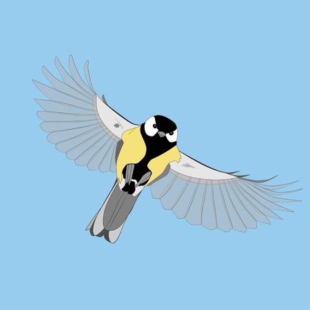 Volando gran carbonero contra el cielo, ilustración vectorial