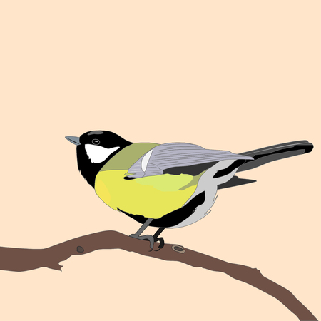 Great titmouse sitting on branch, vector ilustration Ilustración de vector
