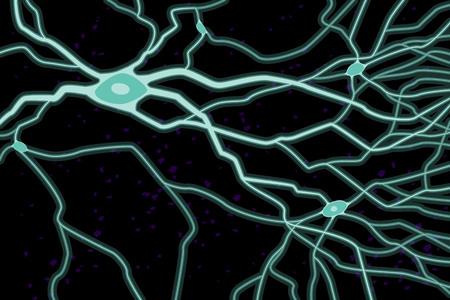 Nerve celles with axons, vector illustration, light blue on black background
